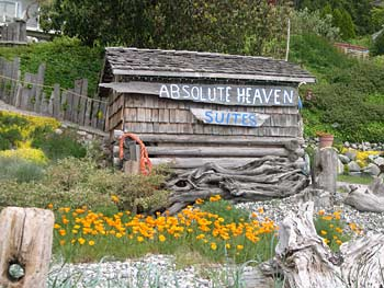 Absolute Heaven Oceanfront Bed & Breakfast Sunshine Coast Photo Gallery